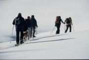 Schneeschuhwanderungen   Chiemgau