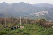 Moio Alcantara | Sizilien